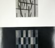 Processualità eidetica (1998) | Pastello su carta | cm 50x70